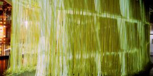 "Installation view ""Lisa Schmitz: InVerse Library"""