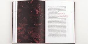 Beispielseiten der Publikation »Reset Modernity!«