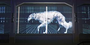 Ein Windhund wird auf eine Leinwand projiziert