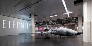 Ausstellungsansicht Hirschfaktor