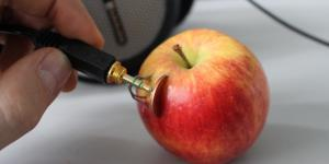 A copper coin and a zinc wire have been thrusted into an apple. Someone is holding a jack connector to both metallic items, that can now carry electricity.