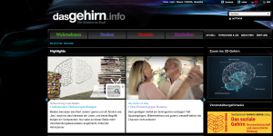 Screenshot of the website www.dasgehirn.info