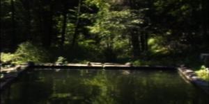 Werk - The Reflecting Pool