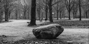 Schwarzweiße Fotografie: Park, mit kahlen Bäumen, im Vordergrund ein Findling