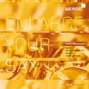 Cover der Publikation »Enlarge Your Sax«