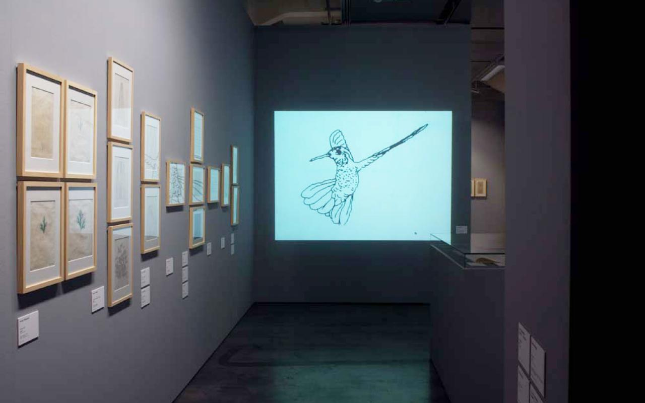 """View of the exhibition »bit international«. On the left wall computer graphics are displayed. In the middle you see a projection of the film """"Hummingbird"""" by Charles Csuri."""