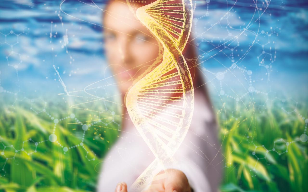 One can see a woman putting her hand towards the viewer. From her hand a DNA strand spins across the center of the picture.