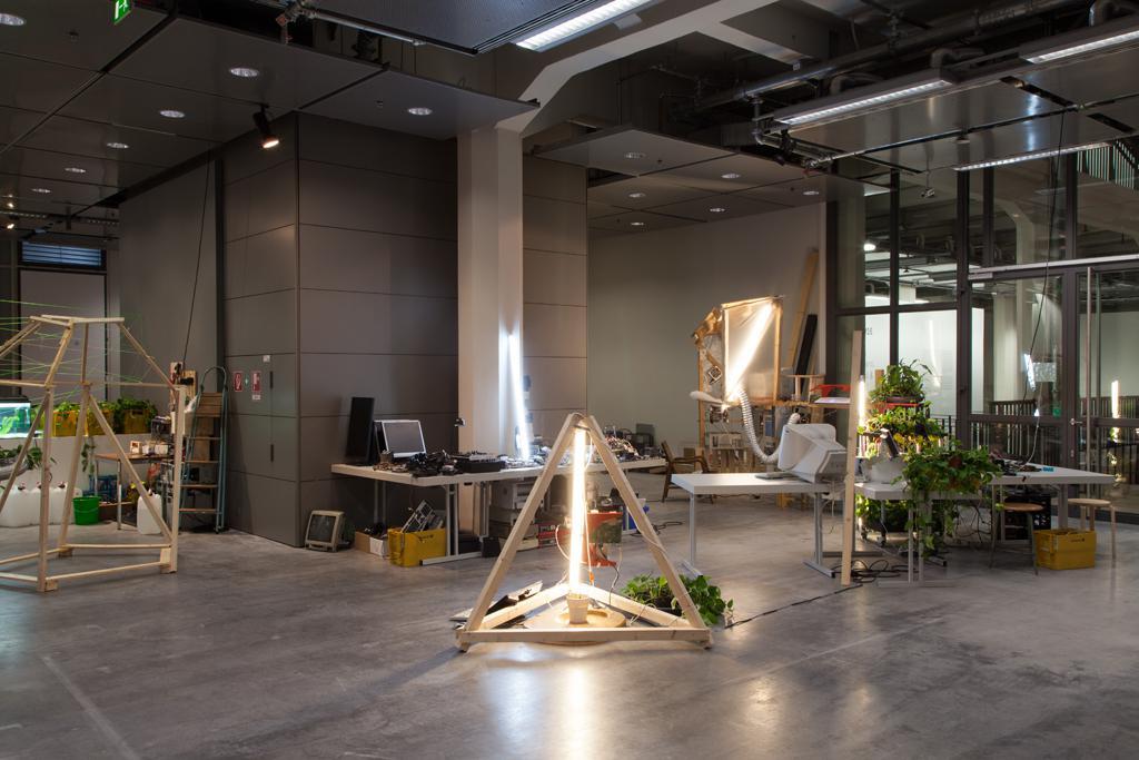 Laborartige Raumstruktur, verschiedene Holzgestänge, Tische Pflanzen und Elektrotechnik.