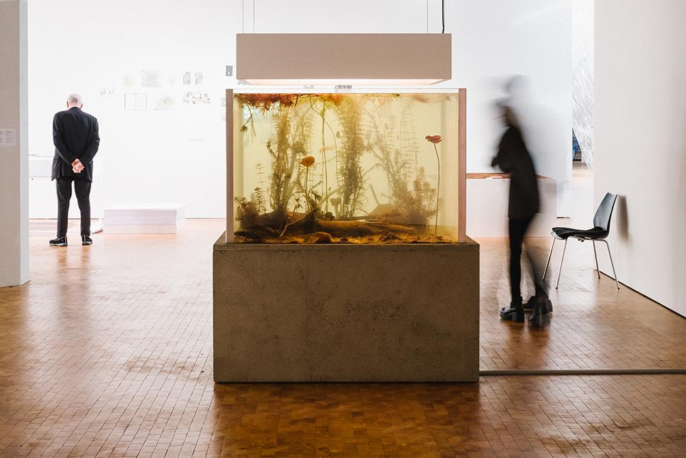Ein Aquarium in der Ausstellung »Reset Modernity!«