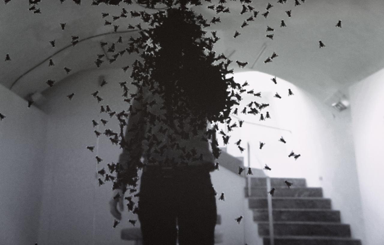 A Person covered in flies