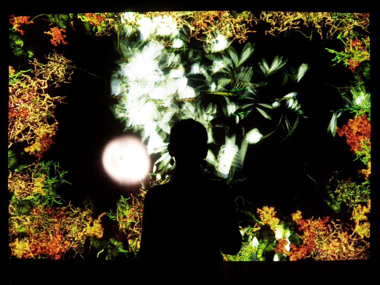 The silhouette of a person in front of a screen of glowing plants