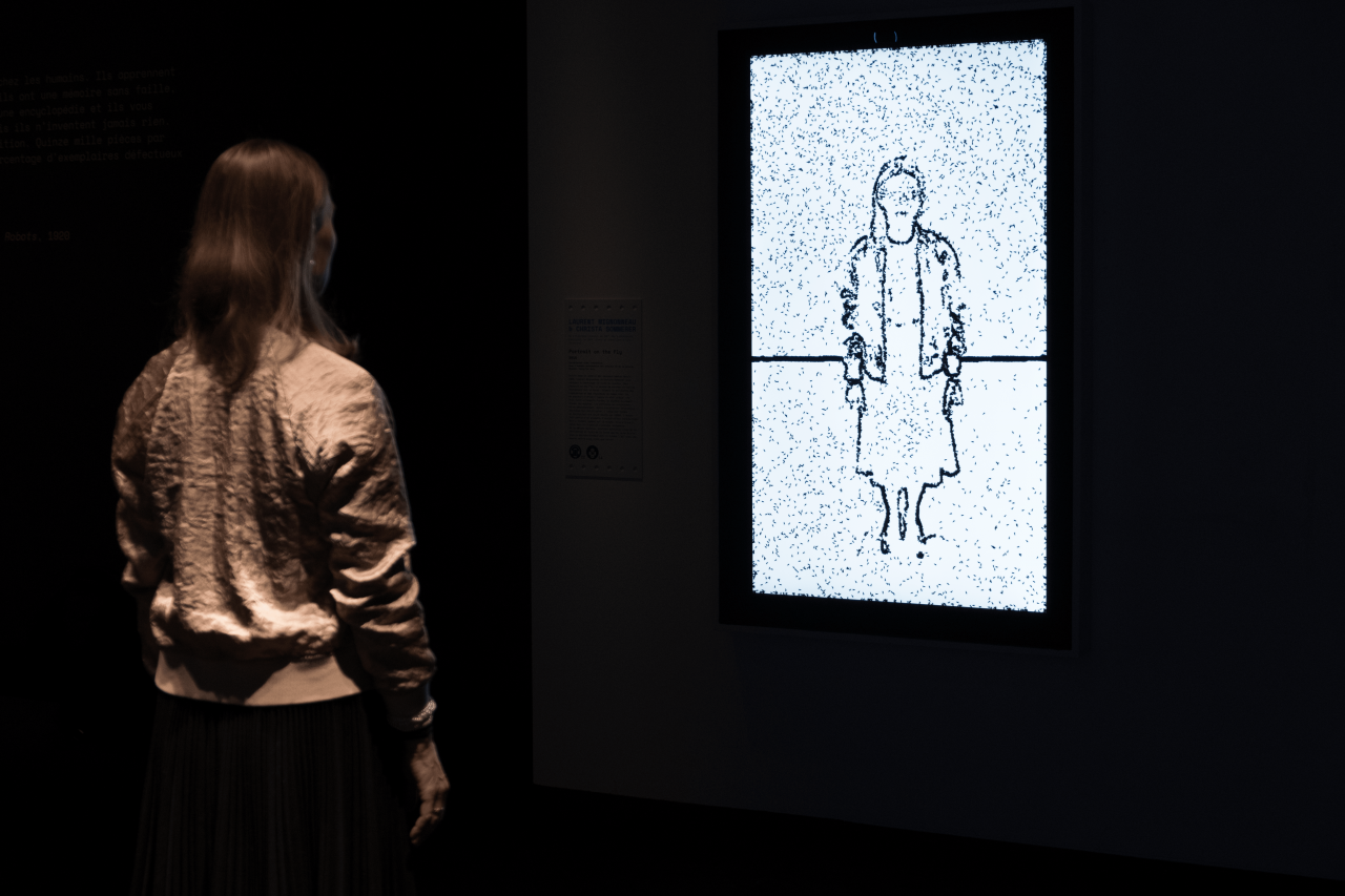 A woman's silhouette is represented by virtual flies on a screen