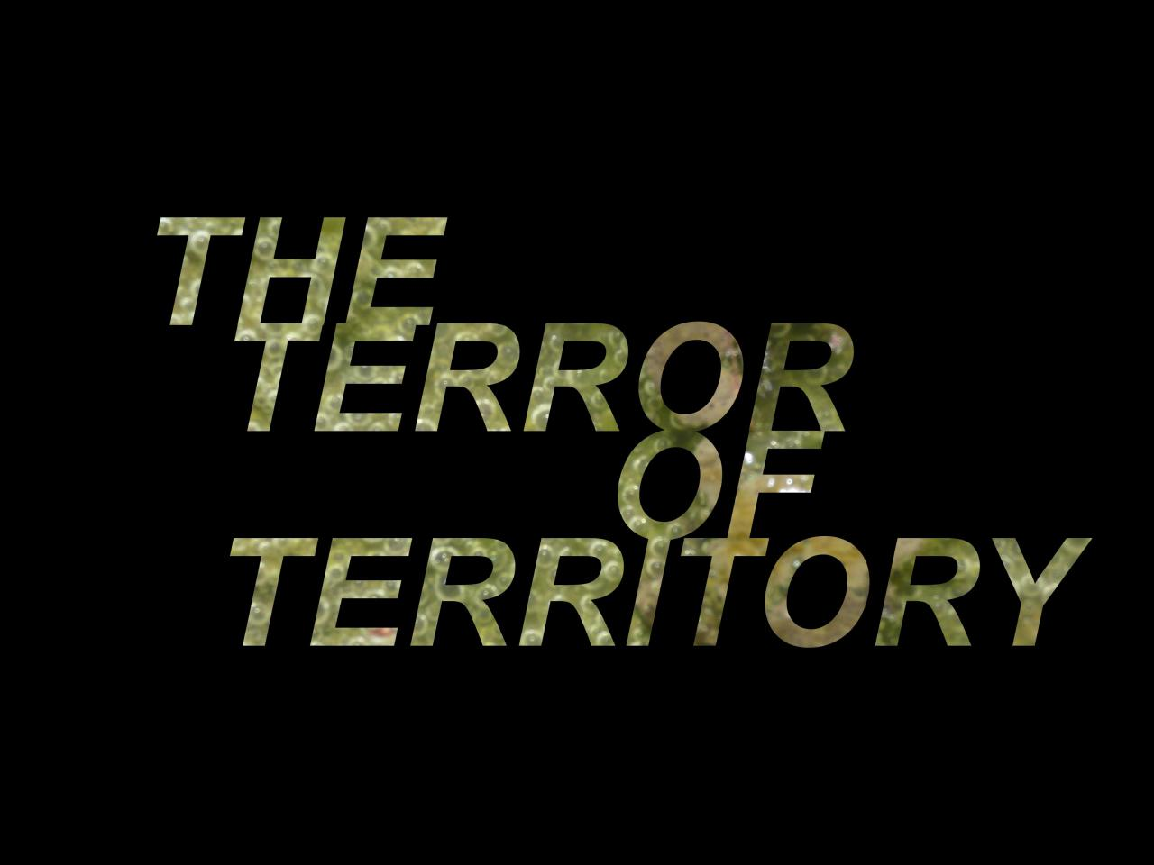 Rachel Libeskind, »THE TERROR OF TERRITORY«, 2021