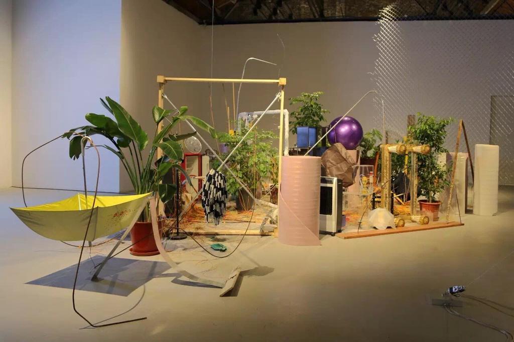 Das Foto zeigt eine Installation aus Pflanzen und zusammengestellten Gegenständen.