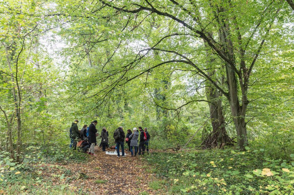 Menschen stehen im Wald im Kreis um Objekte auf dem Waldboden herum.