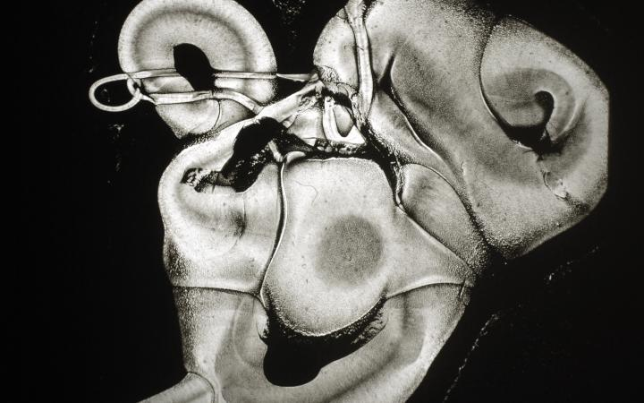 Aldo Tambellini, »Study of Internal Shapes and Outward Manifestations« - Neutro