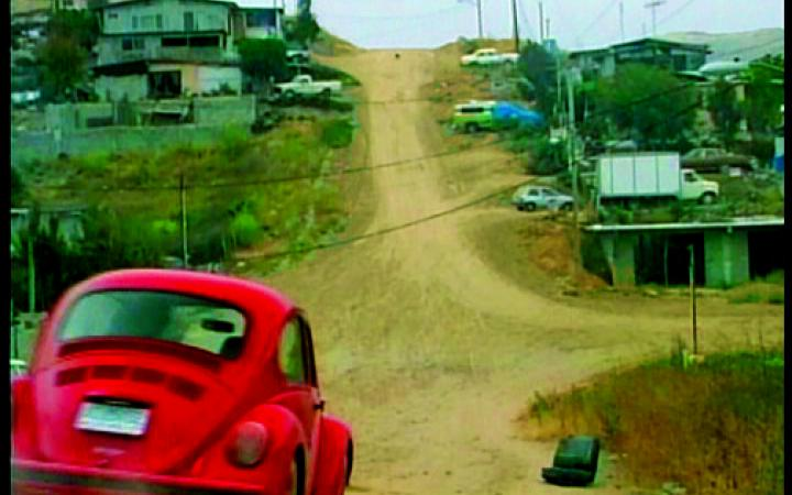 Red Beetle on unpaved road