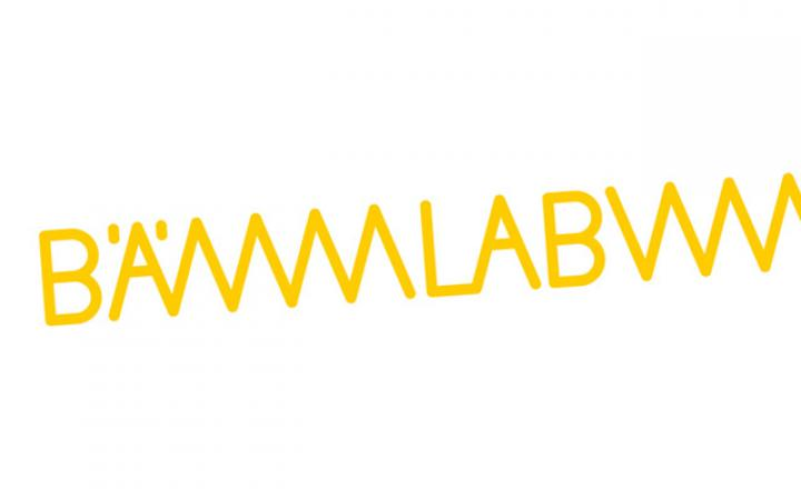 Yellow types: BÄMLAB