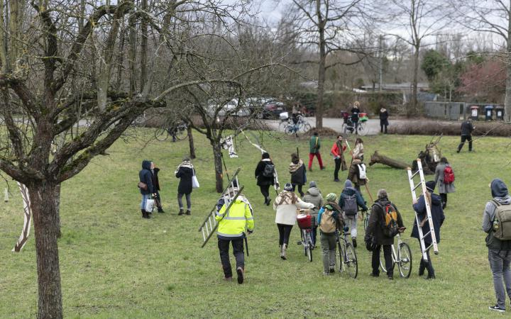 A group of people are walking in a meadow.