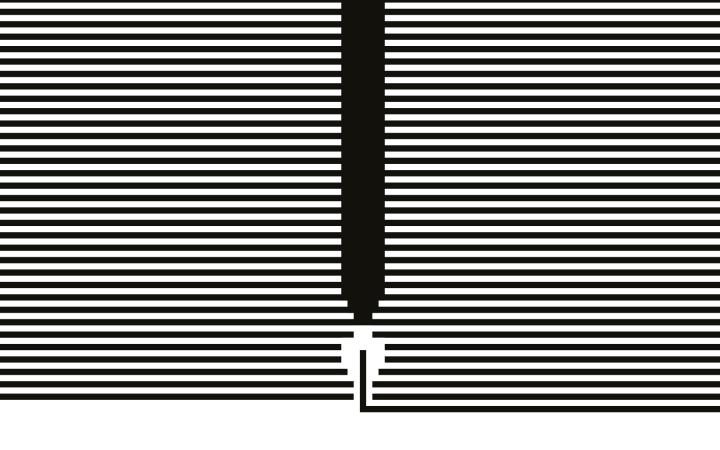 The picture shows a book cover with black and white horizontal lines and a feather.