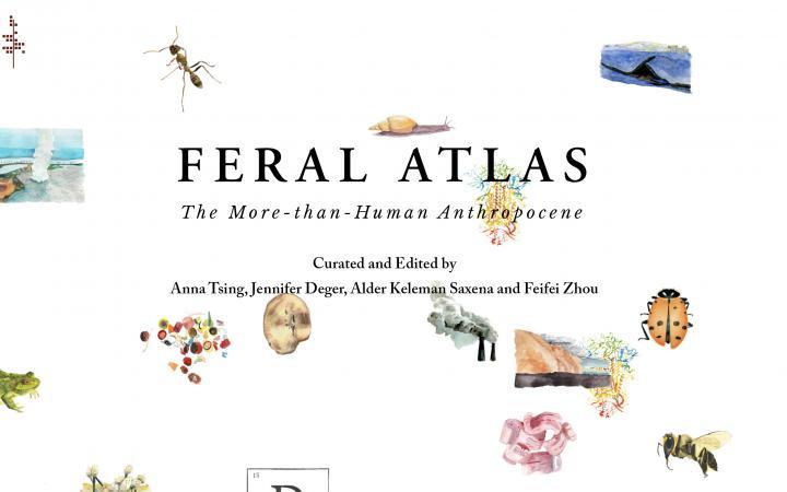 Feral Atlas