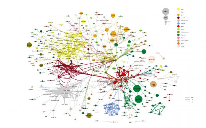 Visualisierung eines Netzwerks verschiedener Essenszutaten in bunten Farben