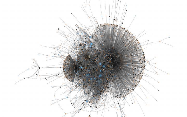 Zu sehen ist ein Netzwerk, das eine ähnliche Form einer Qualle hat, mit schwarzen Linien, die schwarze, orange und blaue Punkte verbinden.