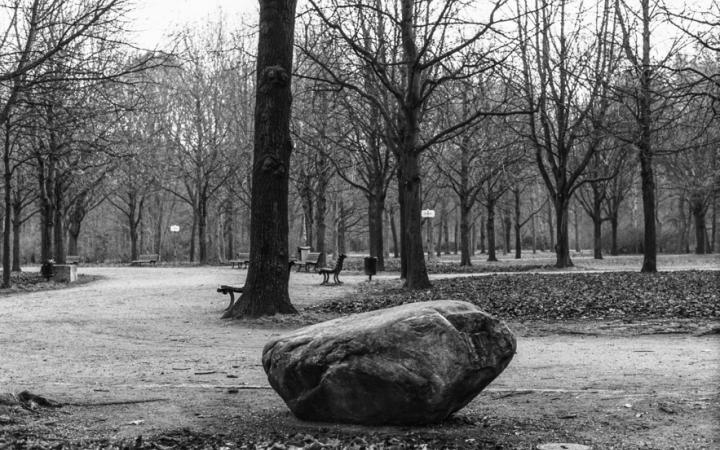 Black and White Photography: Park, with bare trees in the foreground a big stone
