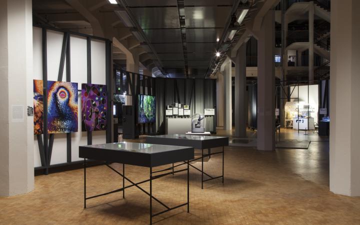 Blick in die Ausstellung  «GLOBALE: Exo-Evolution», 31. Oktober 2015 – 28. Februar 2016, ZKM | Zentrum für Kunst und Medien Karlsruhe