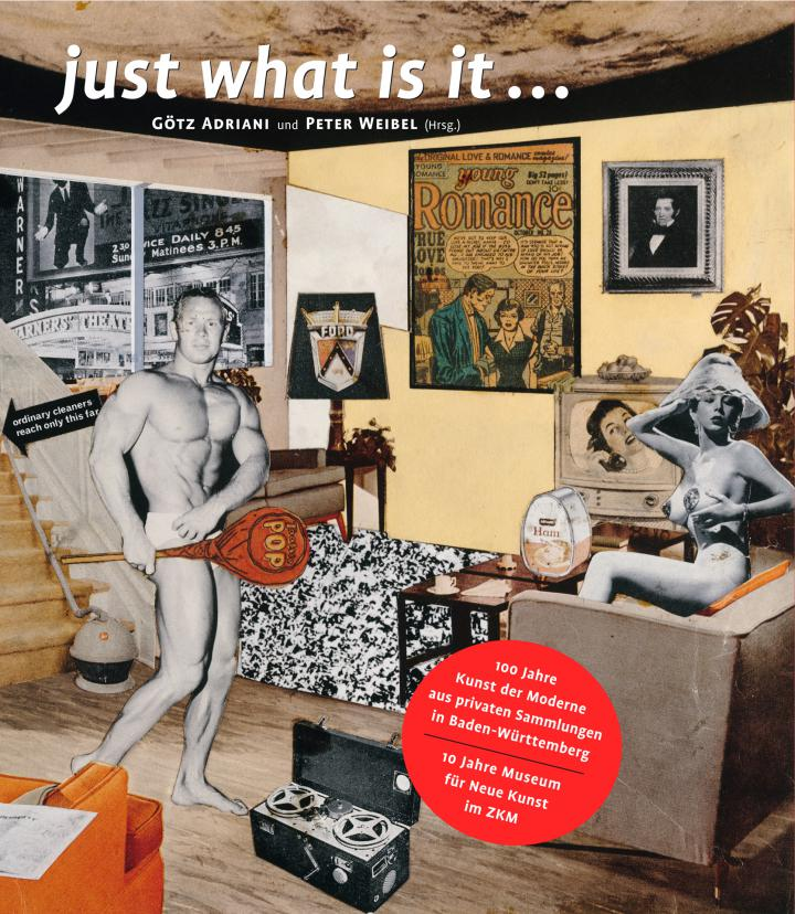 Cover of the publication »Just what is it ...«