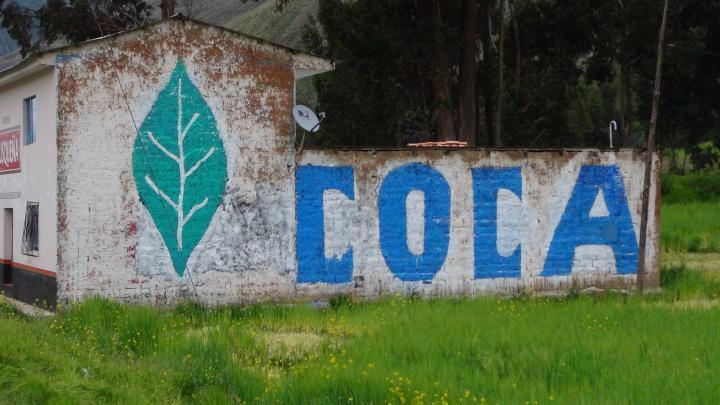 """Blick auf eine Hauswand und eine Mauer: Darauf das Gemälde eines grünen Blatts und des Wortes """"Coca"""""""