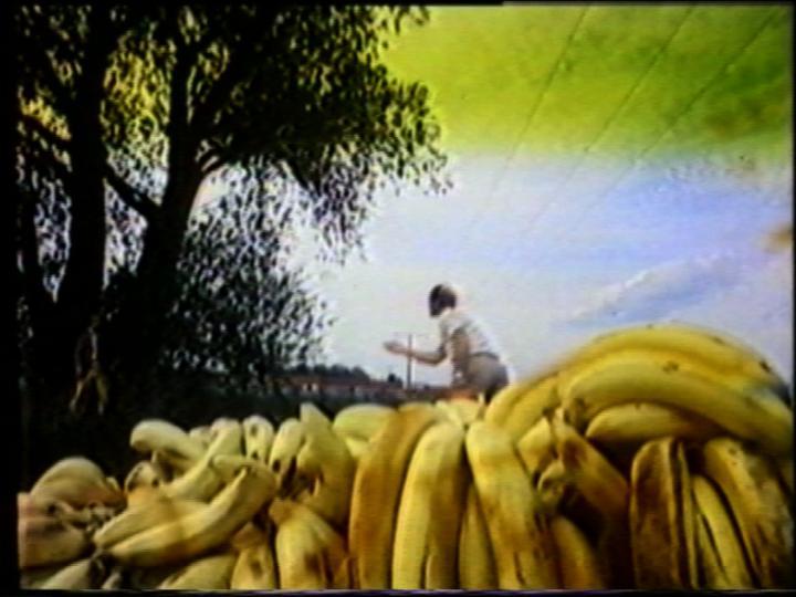 Werk - Bananen