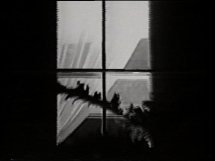 Window Figure