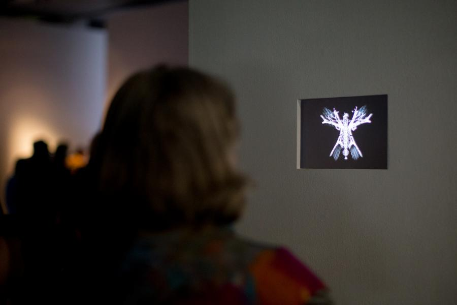 A woman stands in front of a small screen on which an abstract, luminous butterfly can be seen
