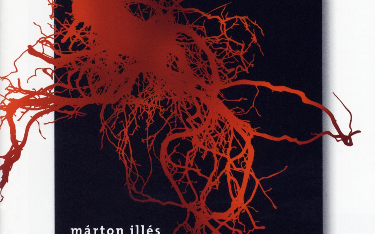 Cover der Publikation »Scene polidimensionali IX, X, XV, XVI / Torso II, III«