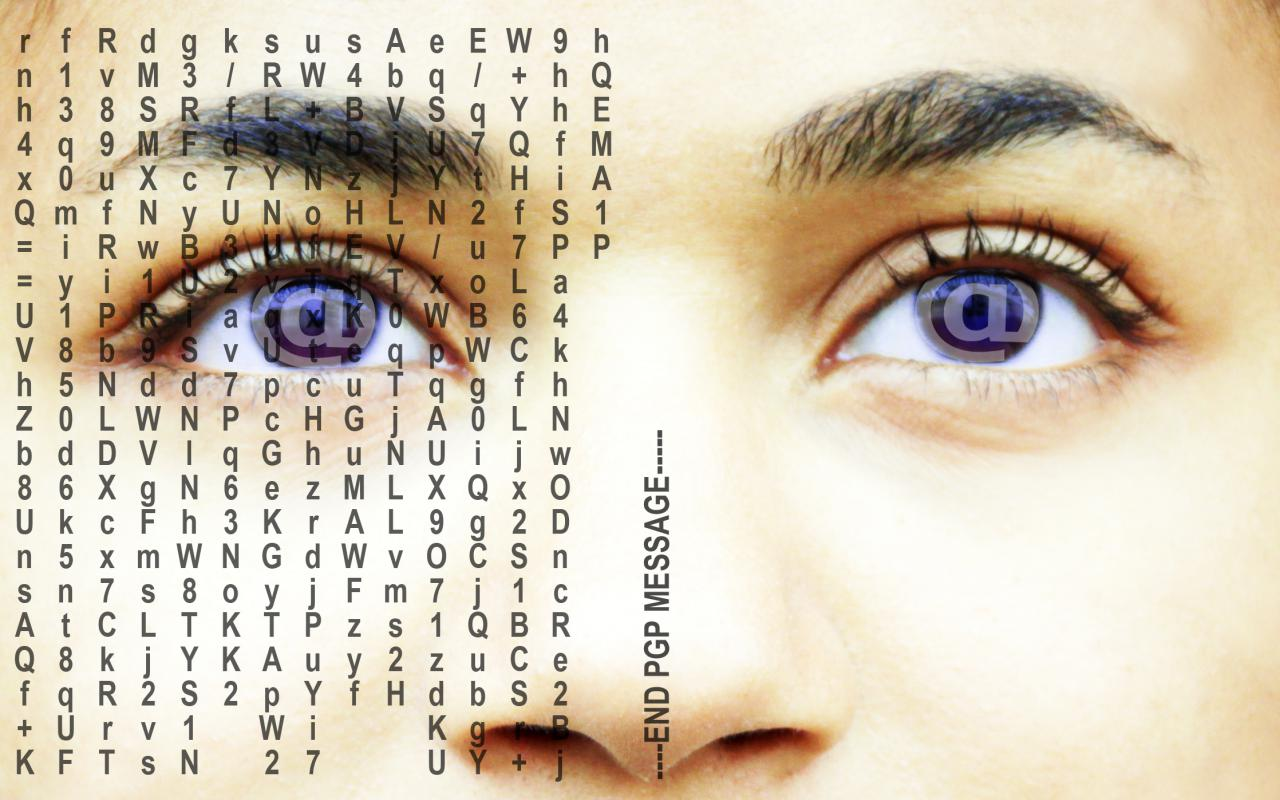 You can see the section of a human face, the focus is on the eyes and the nose, which are partly covered with letters.