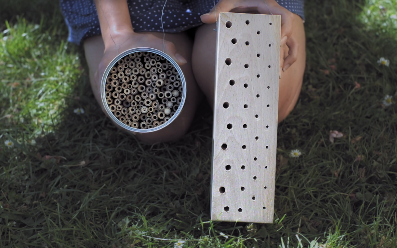Two differently manufactured nesting aids, one from a block of wood and the other from a tin filled with straws, which are particularly suitable for wild bees, are held in the camera.