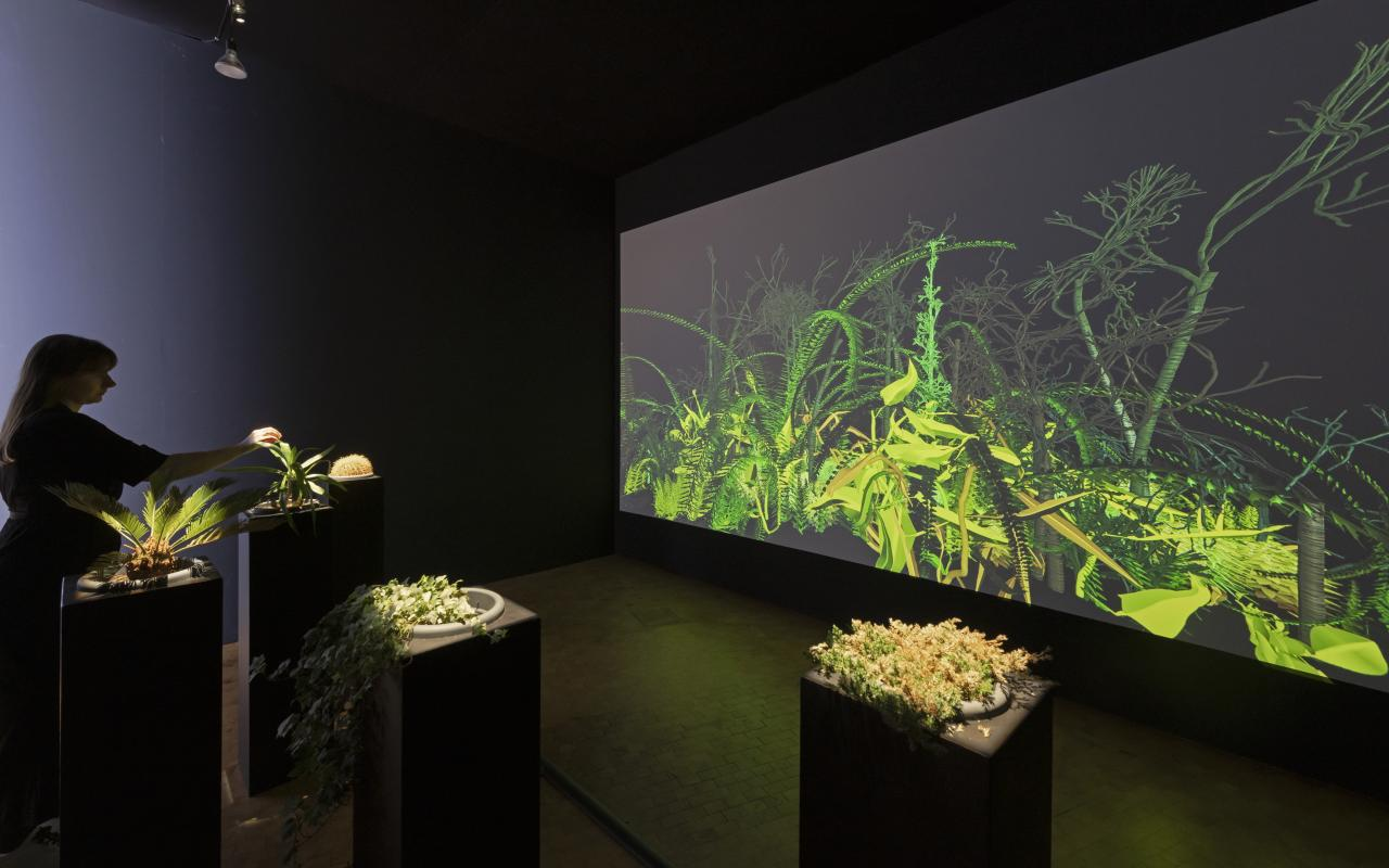 View into the exhibition on the installation »Interactive Plant Growing«