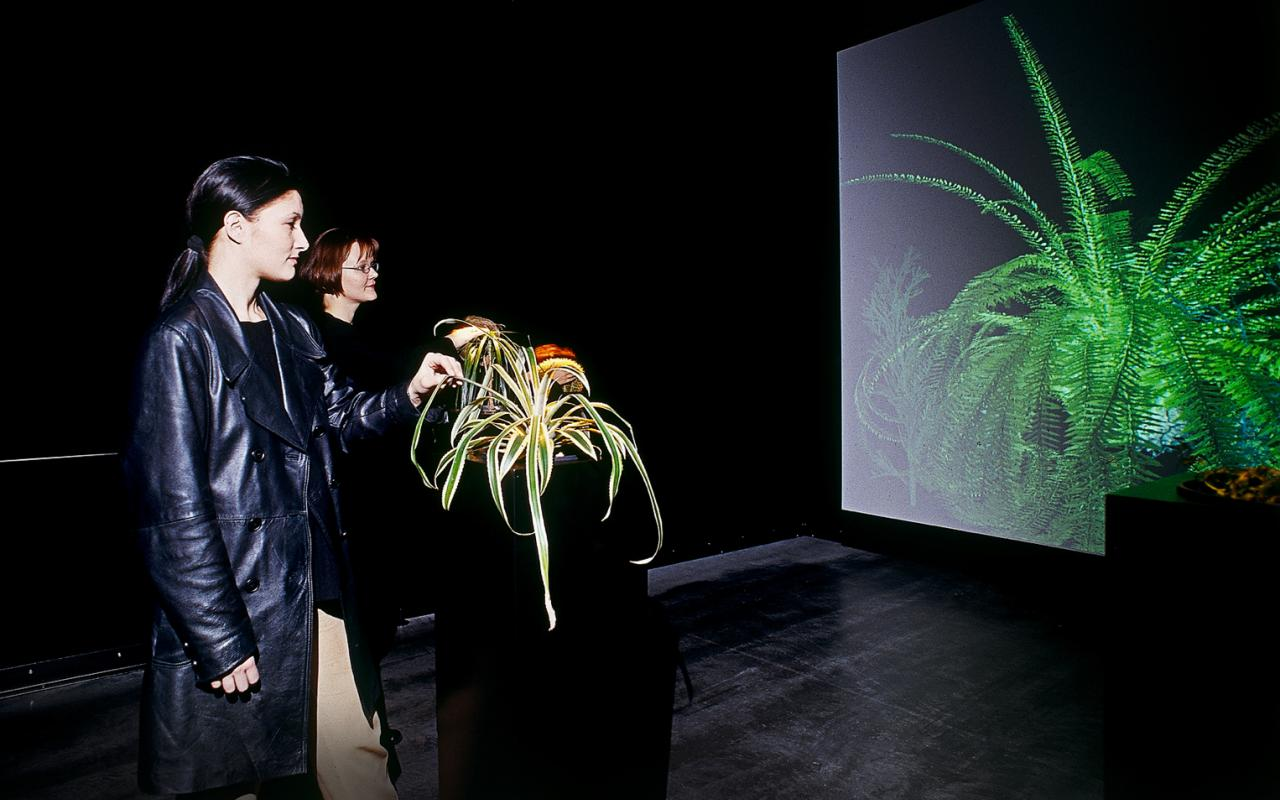 The Interactive Plant Growing