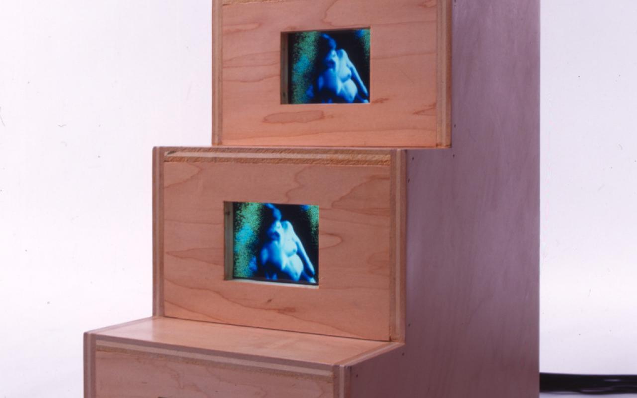 Werk - Duchampiana: Nude Descending a Staircase