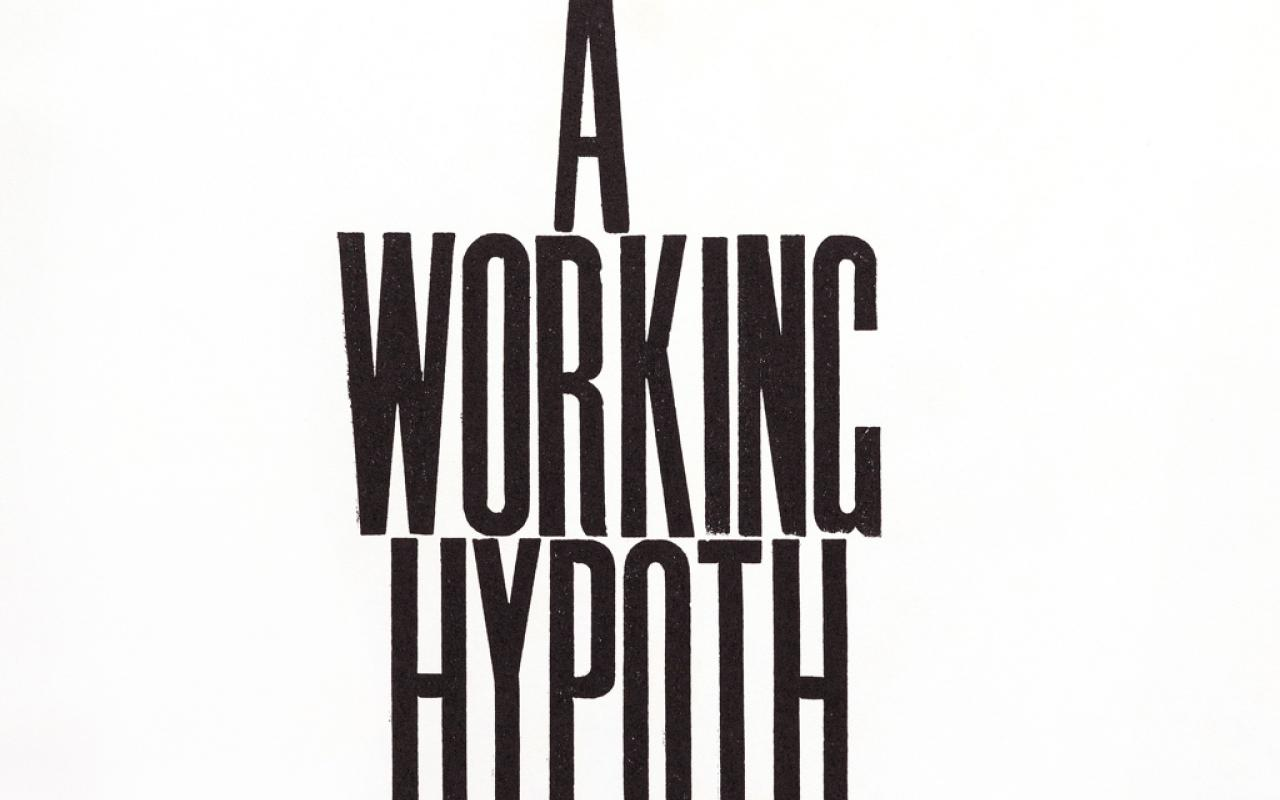 I am a Working Hypothesis