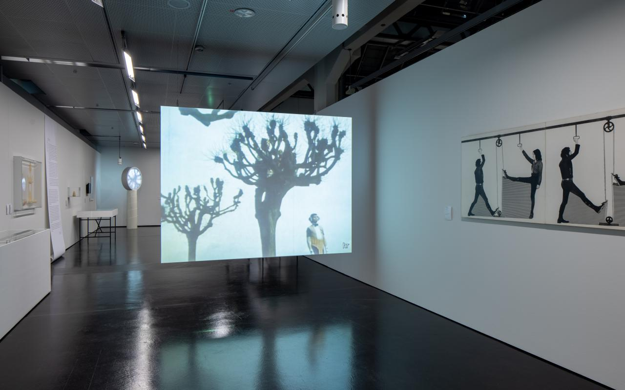 In einem Ausstellungsraum ist eine Leinwand zu sehen. Auf diese ist ein Baum unter dem ein Mann steht projiziert.