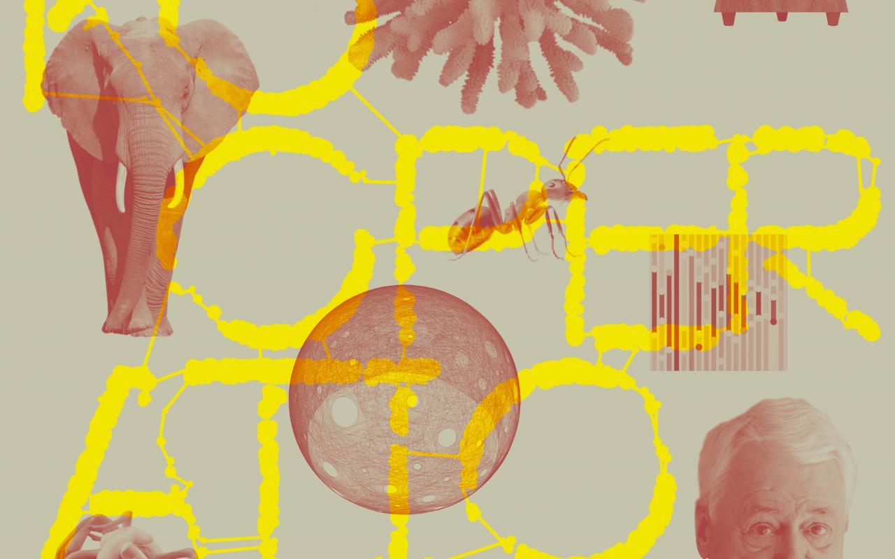 """Ein Plakat zeigt einen Elefanten von vorn, eine Koralle, eine Ameise, einen Männerkopf, ein Rohr, aus dem ein Pilz oder eine Wolke sich zieht. Es steht dazwischen geschrieben: """"Kooperationen"""". Links oben: """"Festival der Kooperationen"""""""
