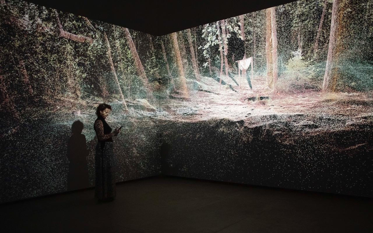Zu sehen ist eine Frau vor zwei beleuchteten Wänden stehend. Projiziert ist ein Wald