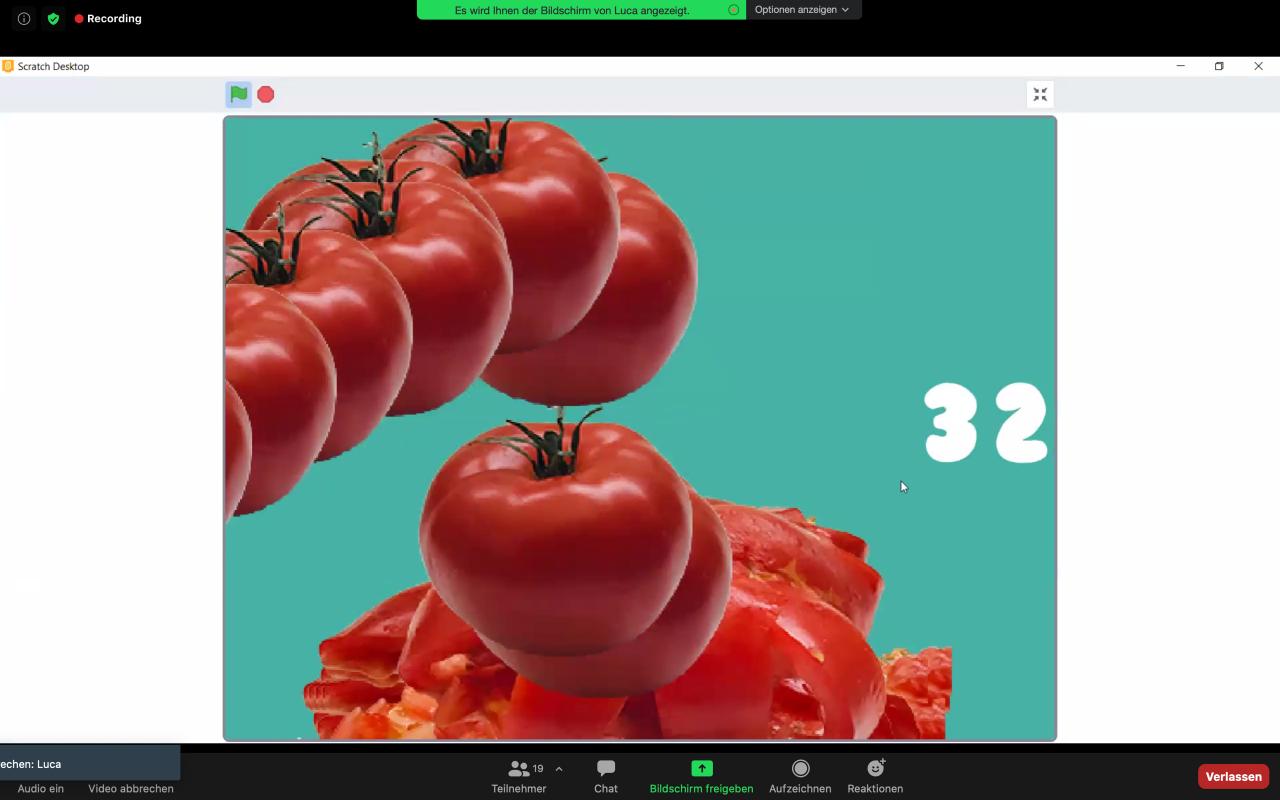 Screenshot eines Zoom-Calls. Darin zu sehen ist ein Bild mit duplizierten virtuellen Tomaten. Das Bild ist im Rahmen der Kulturakademie Baden-Württemberg 2020/21 entstanden.