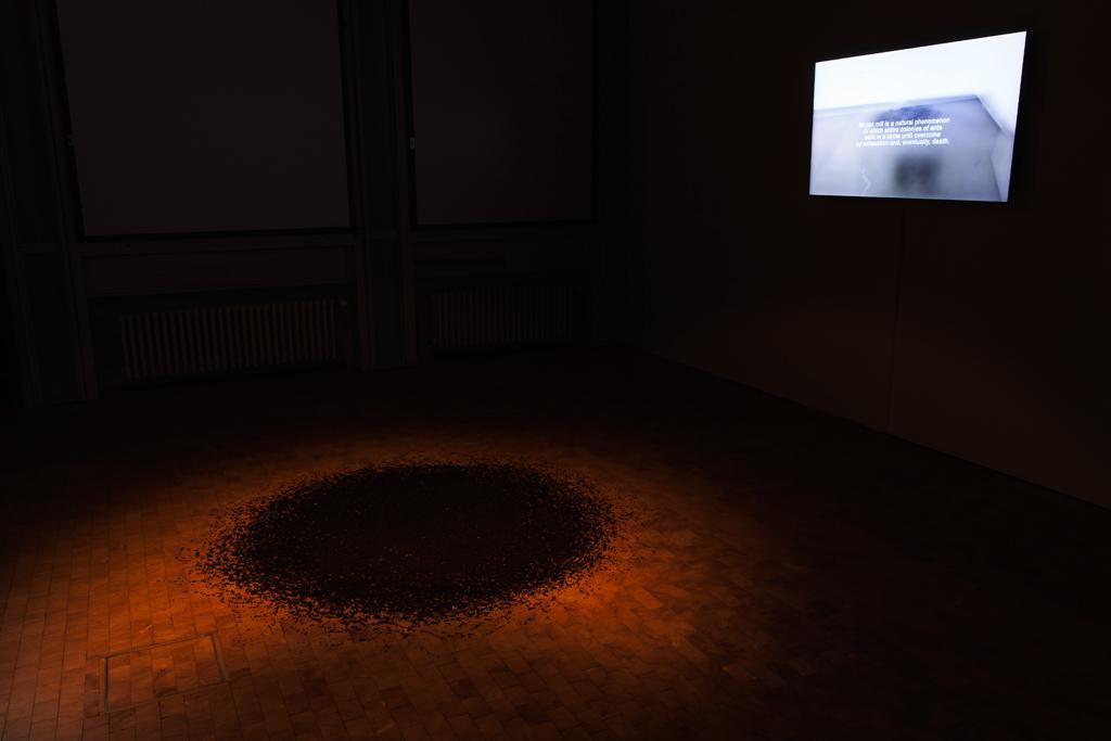 Schwarze Fragmente liegen kreisflächig auf dem Boden, die Stelle wird von einem Lichtkegel erhellt, im Hintergrund läuft eine Projektion mit Text- und Bildinhalten