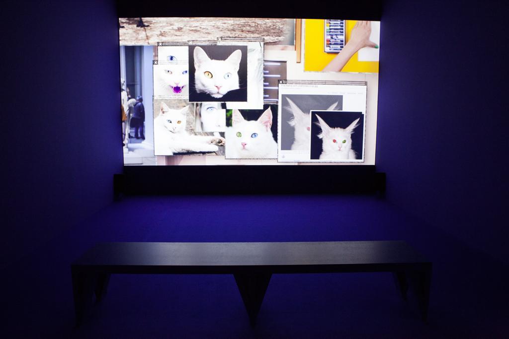 Ein Monitor vor einer Blauer Wand.