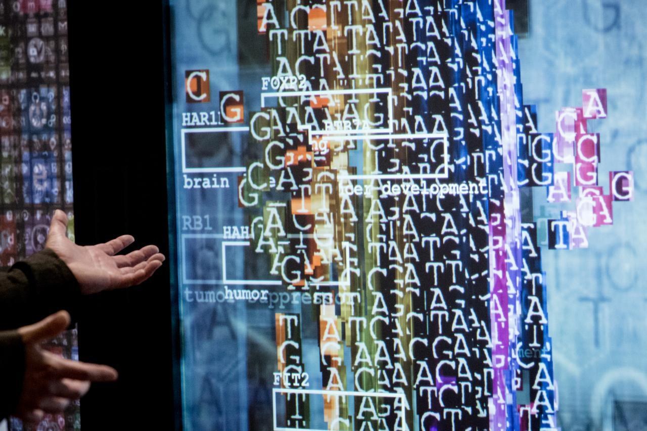 Blick in die Ausstellung »Open Codes«