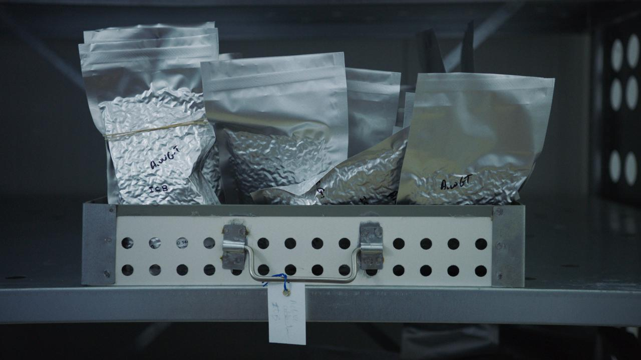 Photo of a metal shelf with a drawer. The drawer is full of silver bags filled with genetic material.