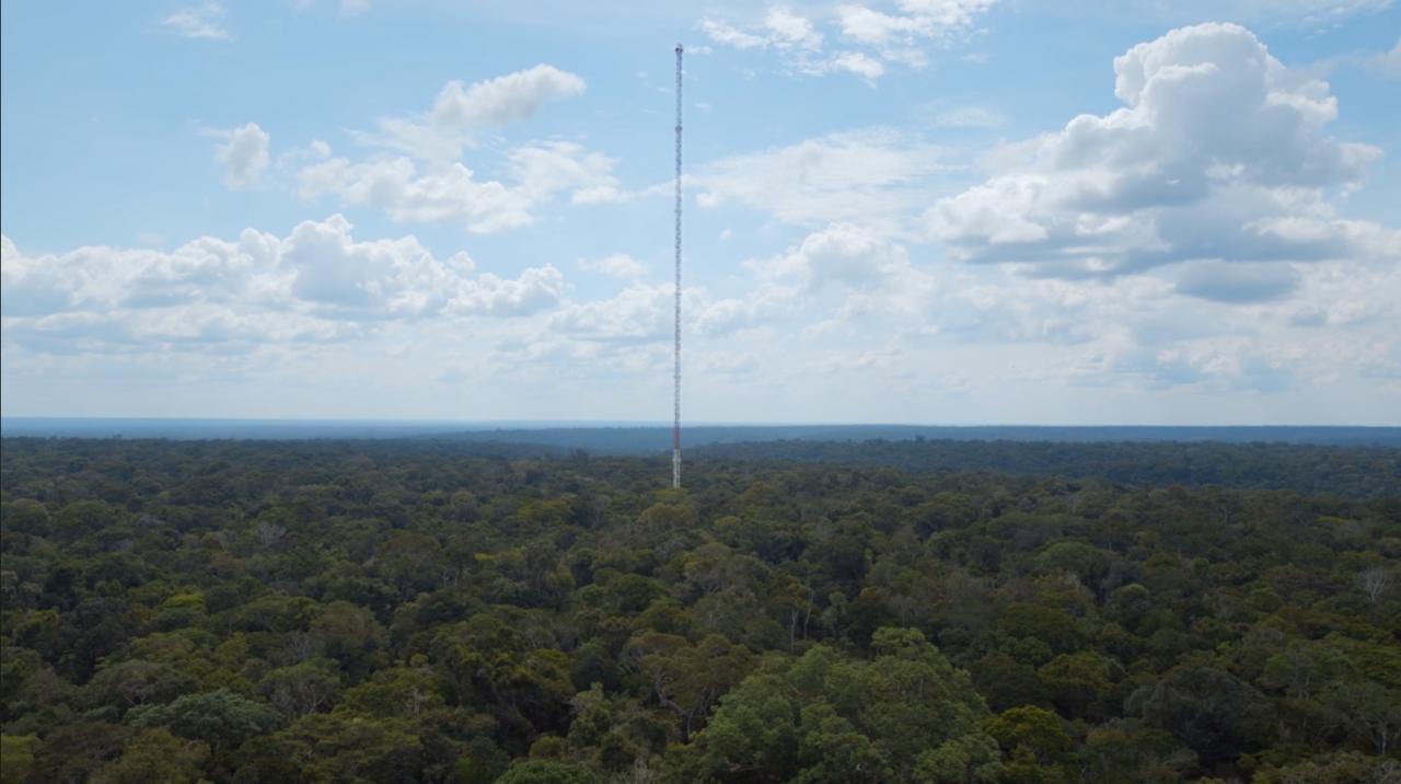 Zu sehen ist ein sehr hoher Turm aus einem Stahlgerüst, der aus dem Amazonas empor ragt.